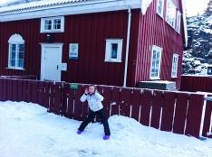 Casetta rossa norvegese