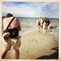 Una famiglia danese con 5 figli e 4 husky